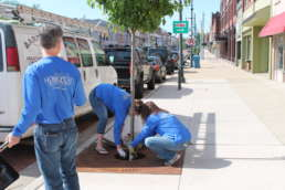 Three members of the Homestead team replacing mulch for a tree in downtown Albion.