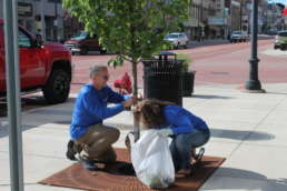 Two members of the Homestead team leveling mulch for a tree in downtown Albion.