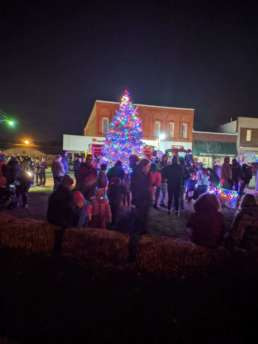 A tree lit up with spectacular colored lights for the Annual Springport Christmas Tree Lighting.